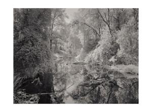 Ridgefeild WA 3 © Tyler Boley