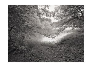 Ridgefeild WA 4 © Tyler Boley