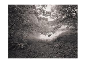 Ridgefeild, WA 4 © Tyler Boley