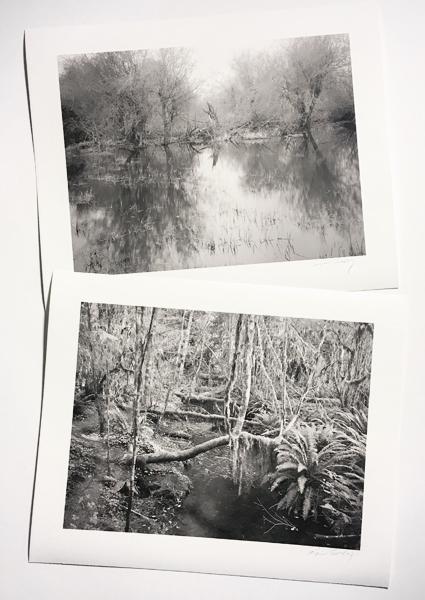 Garfield County WA 3 and Hoh Rain Forest WA © Tyler boley