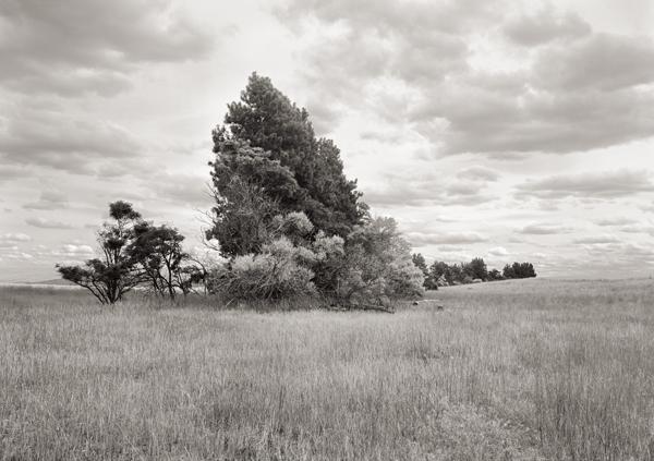 DOUGLAS COUNTY, WA 3 © 2007 Tyler Boley